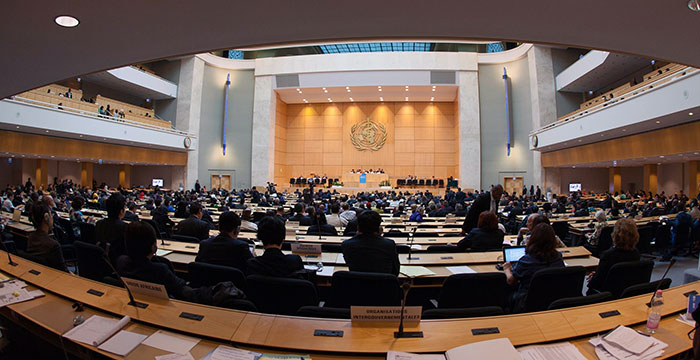 Governments Adopt a Global Resolution on Rheumatic Fever and Rheumatic Heart Disease at the World Health Assembly